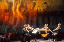 Sonar Quartett, Foto: David Varnhold